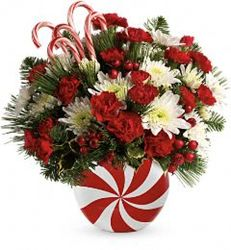 Peppermint Treat from Westbury Floral Designs in Westbury, NY