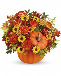 Warm Fall Wishes - T13H110C from Westbury Floral Designs in Westbury, NY