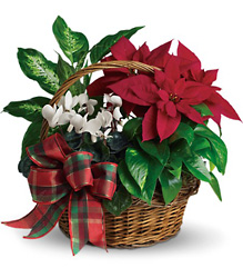 Holiday Homecoming Basket from Westbury Floral Designs in Westbury, NY