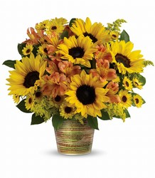 Grand Sunshine Bouquet from Westbury Floral Designs in Westbury, NY