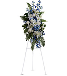 Ocean Breeze Spray from Westbury Floral Designs in Westbury, NY