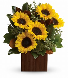 Golden Sun from Westbury Floral Designs in Westbury, NY