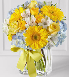 Deliver a Celebration from Westbury Floral Designs in Westbury, NY