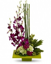 Zen Artistry from Westbury Floral Designs in Westbury, NY